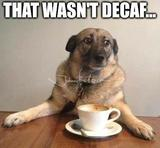 That wasnt decaf memes