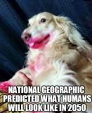 National geographic funny memes