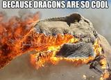 Dragons are cool memes