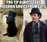 Fashion advice memes
