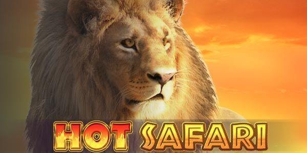 Hot Safari Slot Machine Game